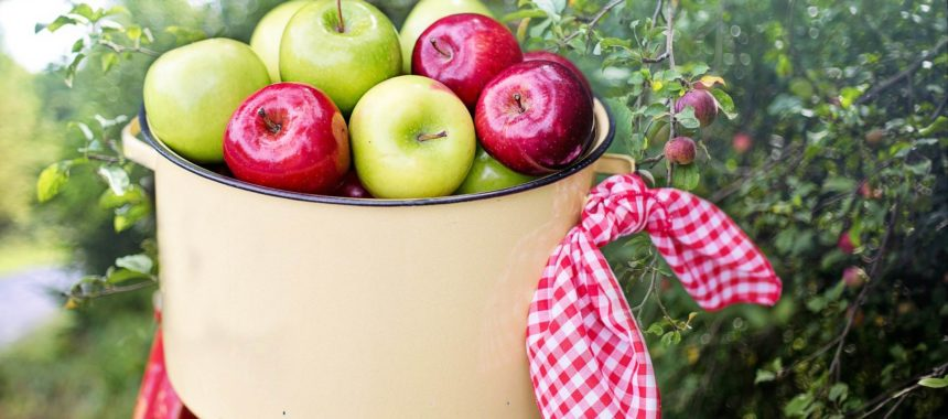 Benefits of apples. Helps with constipation, diarrhoea… And much, much more