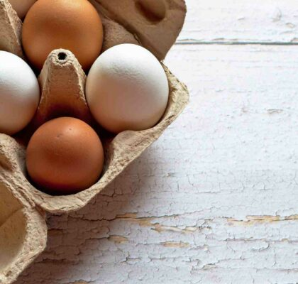 Egg Day: discover its properties